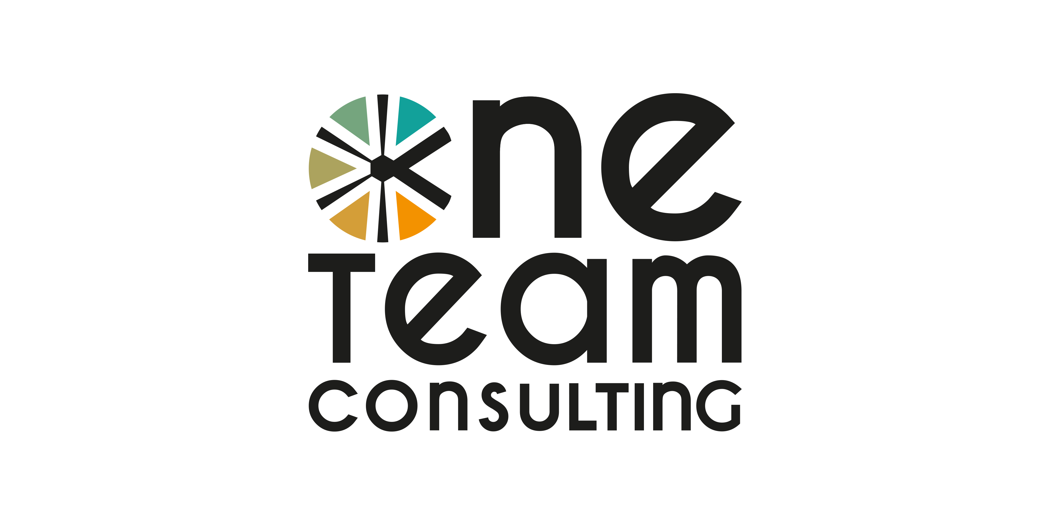 One Team Consulting